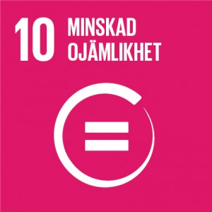 Sustainable Development Goals_icons-10