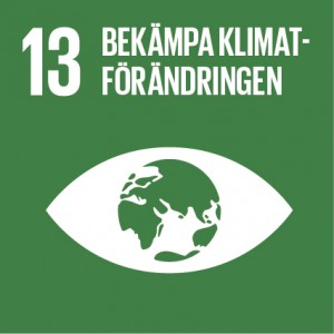 Sustainable Development Goals_icons-13