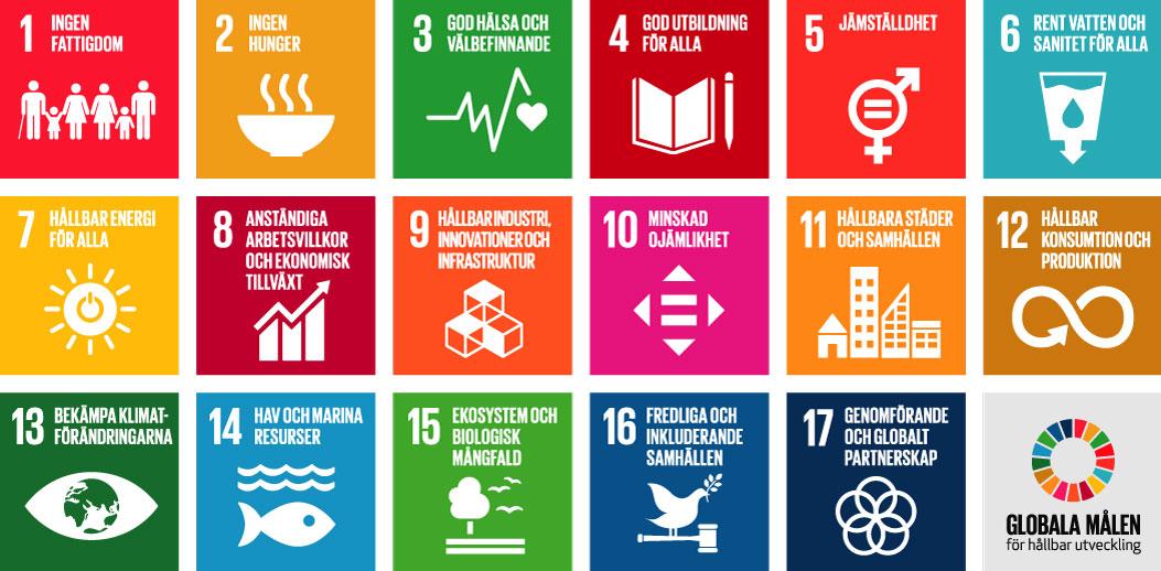 Bildresultat för globala målen