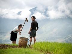 Livelihood. UN Photo/Kibae Park