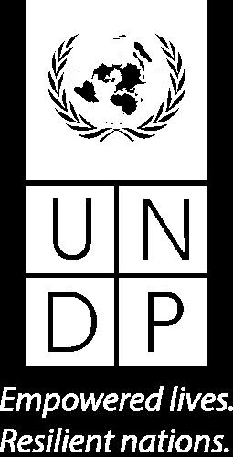 UNDP Logotyp Vit