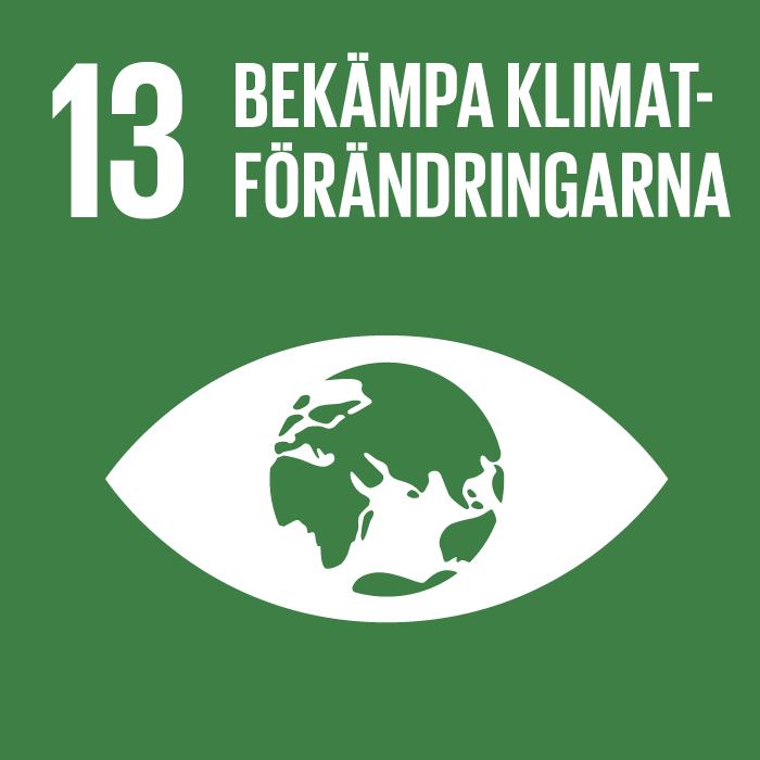 13. Bekämpa klimatförändringarna. Mörkgrön kvadrat, text och symbol i vitt. Ett öga, där irisen är ett jordklot.