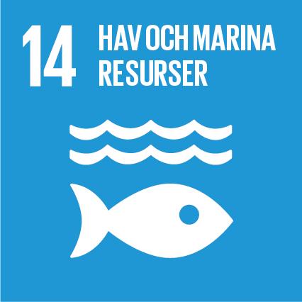 14. Hav och marina resurser. Blå kvadrat, text och symbol i vitt. En fisk under två våglinjer.