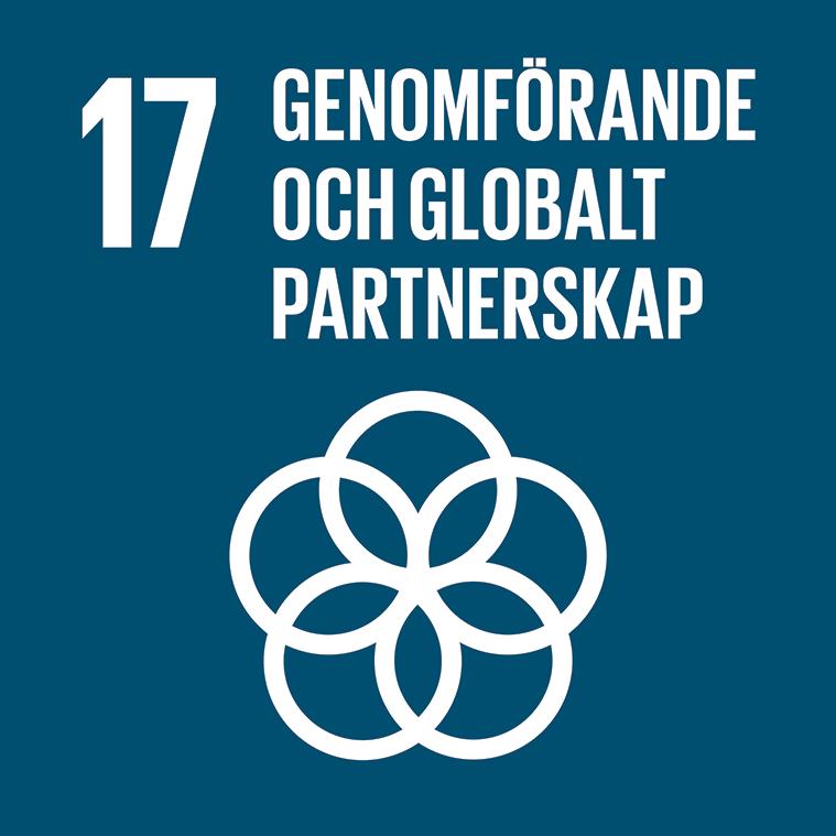 17. Genomförande och globalt partnerskap. Marinblå kvadrat, text och symbol i vitt. Fem ringar överlappar varandra i en cirkel.