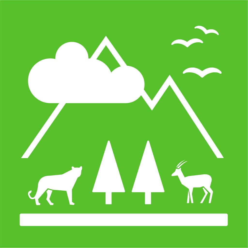 Ikon för delmål 15.4: Bevara bergsekosystem