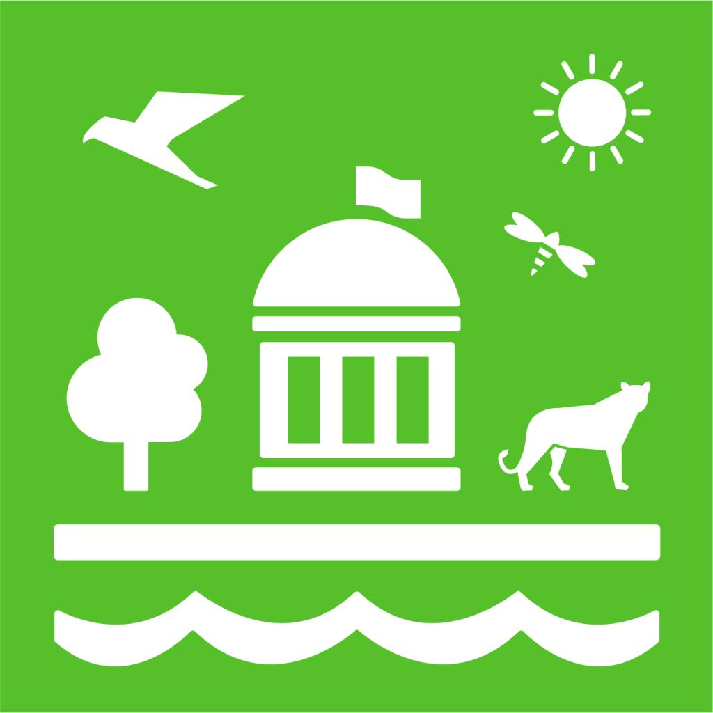 Ikon för delmål 15.9: Integrera ekosystem och biologisk mångfald i nationell och lokal förvaltning