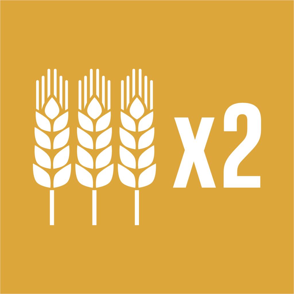 Ikon för delmål 2.3: Fördubbla småskaliga livsmedelsproducenters produktivitet och intäkter